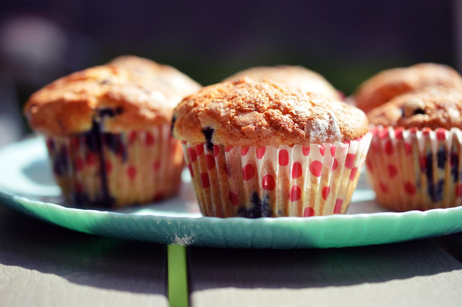 muffins-cu-afine-2